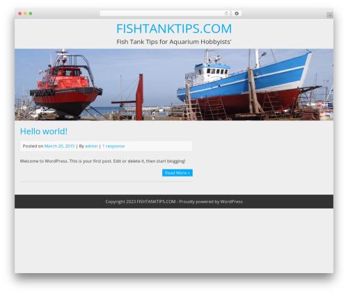 BlueGray free WP theme - fishtanktips.com