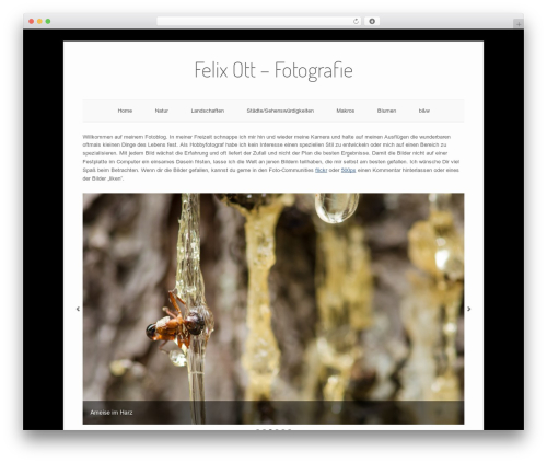 Origami free WordPress theme - felixott.de