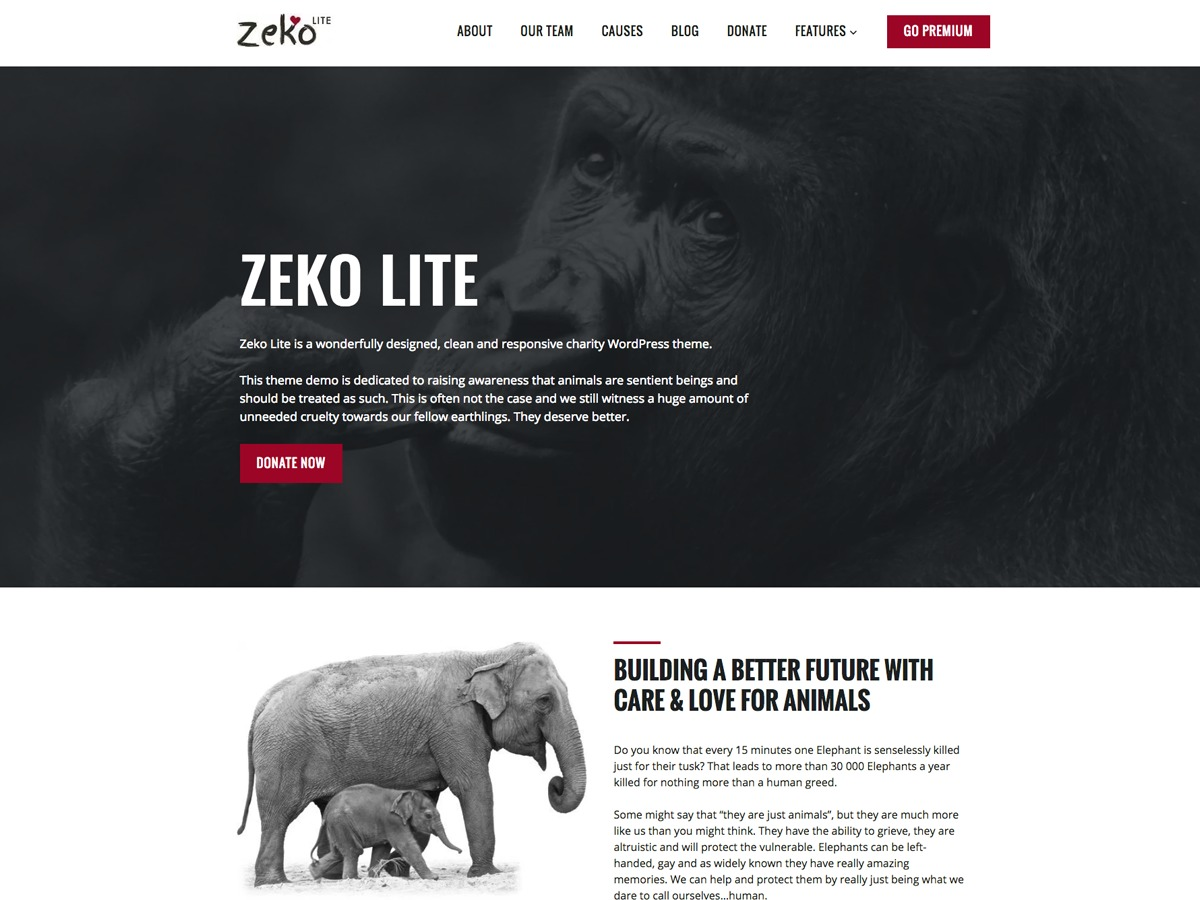 Zeko Lite WordPress page template