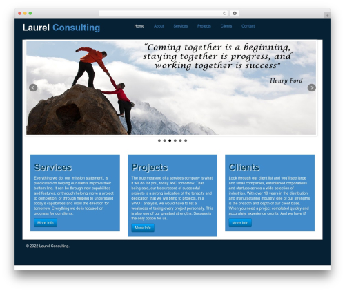 Laurel best WordPress theme - laurelconsulting.com