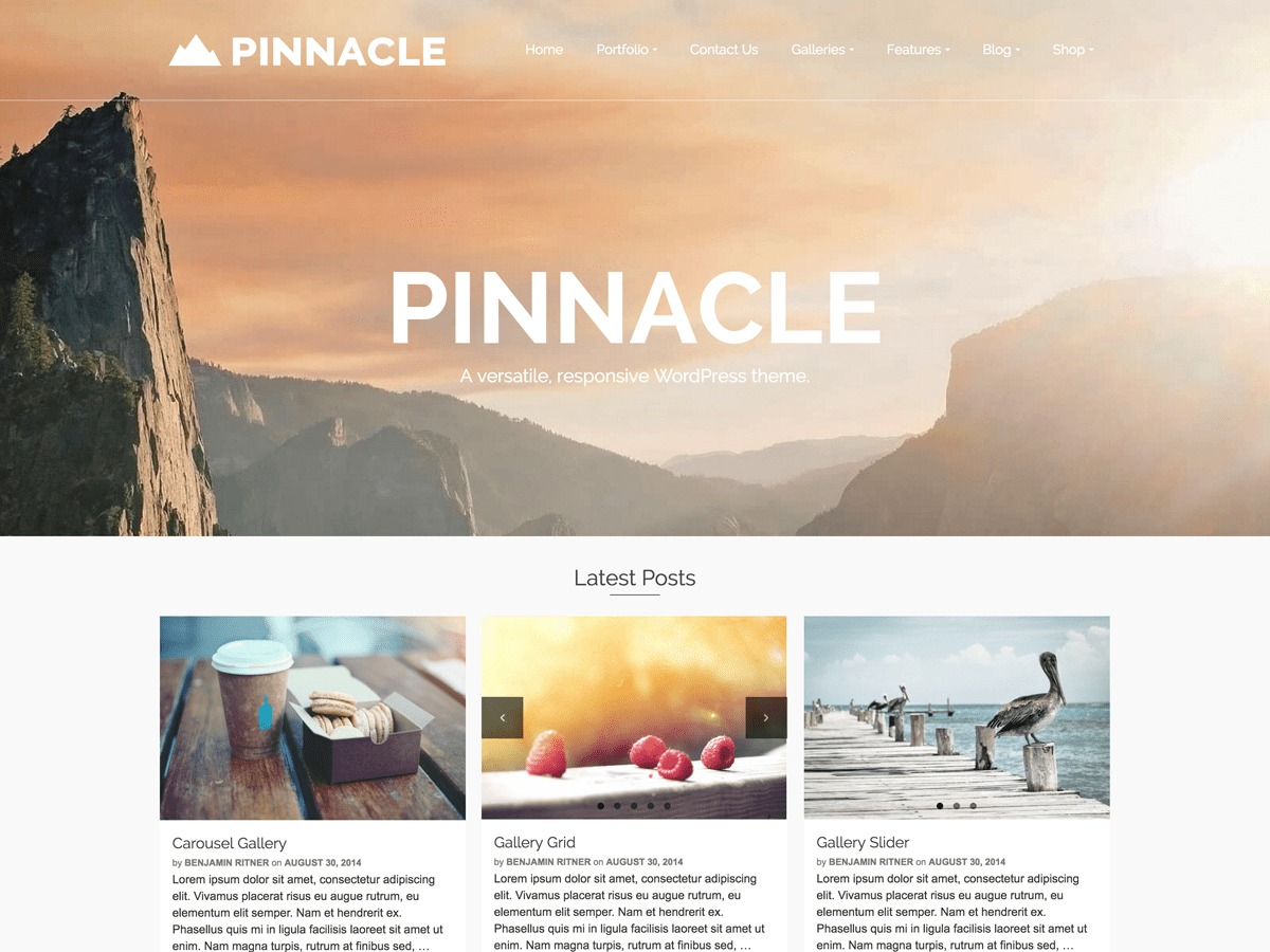 Pinnacle-child WordPress theme design
