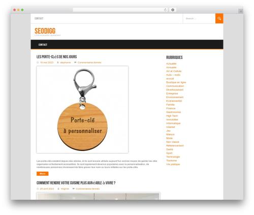 Best WordPress template Koenda - seodigg.fr