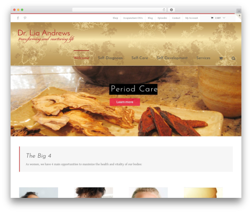Theme WordPress Avada - liaandrews.com