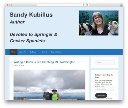 Best WordPress template GeneratePress - sandykubillus.com