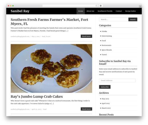 WordPress website template Cleanead - sanibelray.com