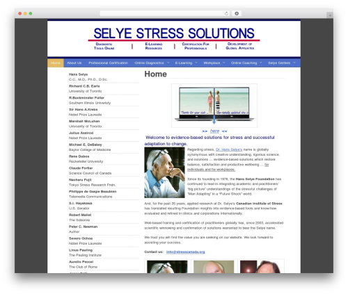 Ashford WordPress page template - selyestresssolutions.com