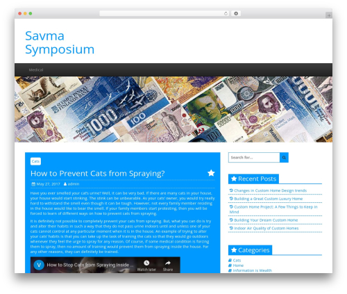 Creative Blog WordPress blog theme - savmasymposium2009.com