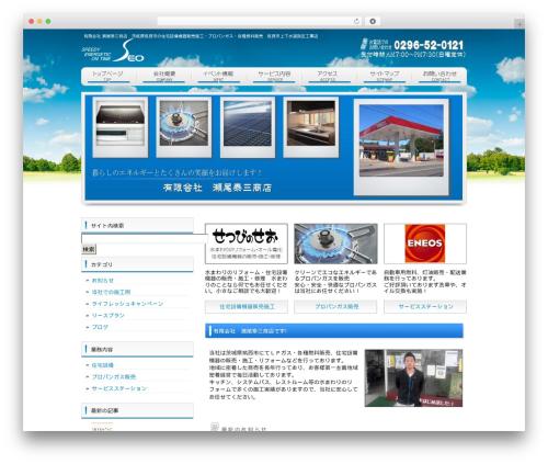 WordPress template cloudtpl_376 - seoene.net