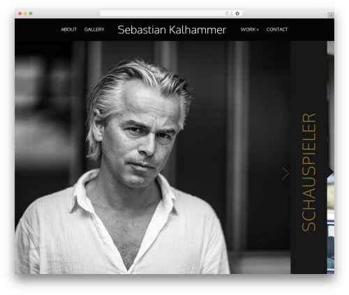 Acid WordPress theme design - sebastian-kalhammer.de