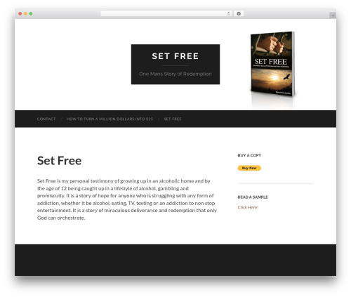 WordPress template Hemingway - setfreebook.com