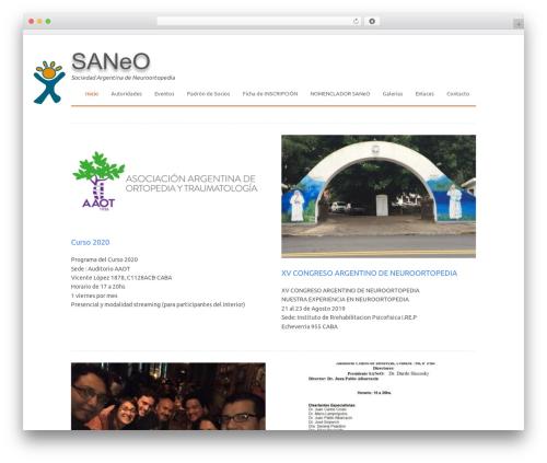 WP-PinUp WordPress template - saneo.org