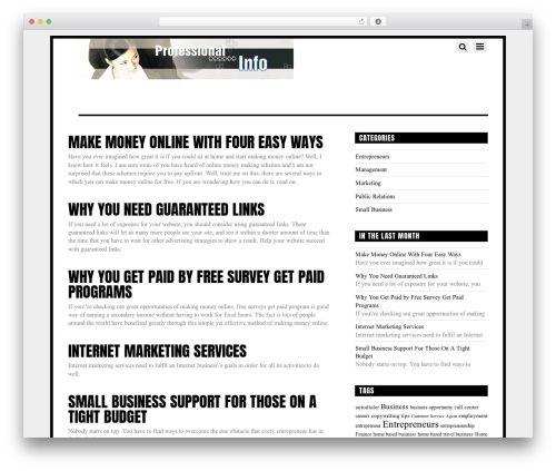 Themify Funki WordPress template for business - fessional.info
