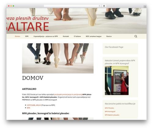 Twenty Thirteen free WordPress theme - saltare.eu