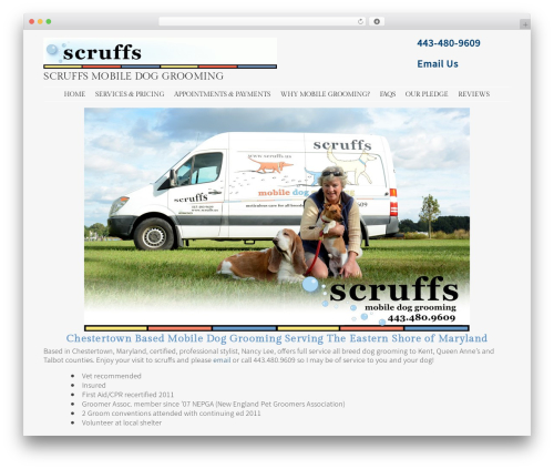 Best WordPress theme Stay - scruffs.us