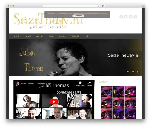 Pinboard WordPress template - seizetheday.nl