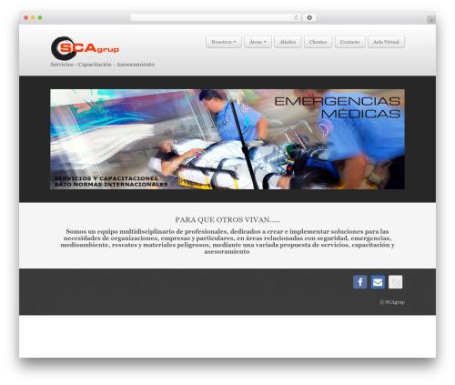 Business Pro 4 best WordPress theme - scagrup.org