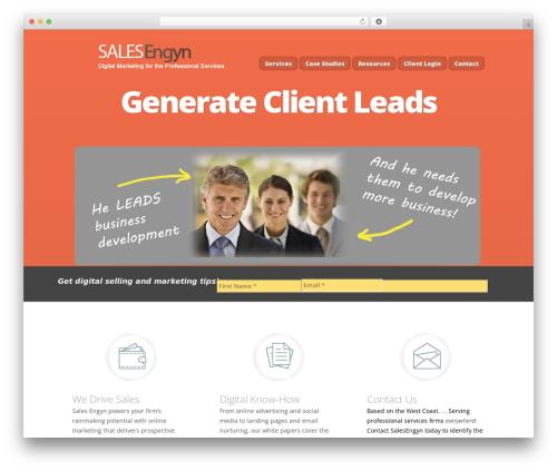 Nimble WordPress theme design - salesengyn.com