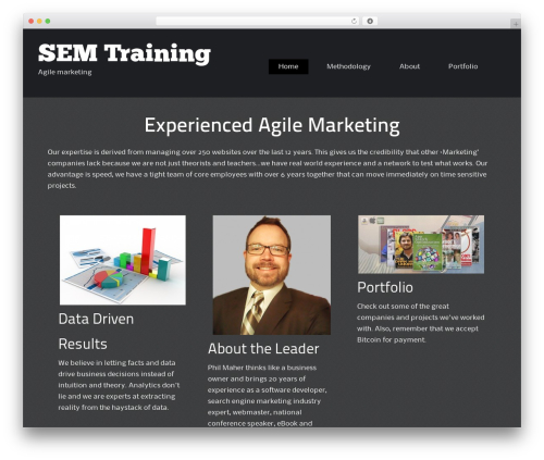 ThemeAlley.Business business WordPress theme - semtraining.com