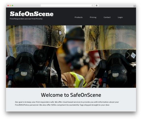Free WordPress Spider FAQ plugin - safeonscene.com