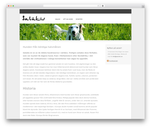Bota best free WordPress theme - salukis.se