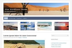 Slim WordPress Theme WordPress blog theme