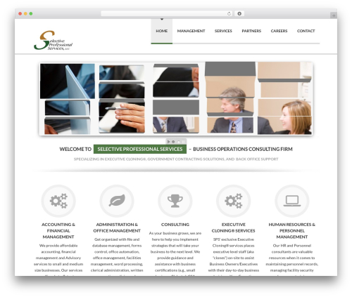Delicate WordPress template for business - selective-pro.com