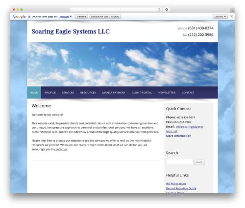 Customized company WordPress theme - soaringeaglesystems.net