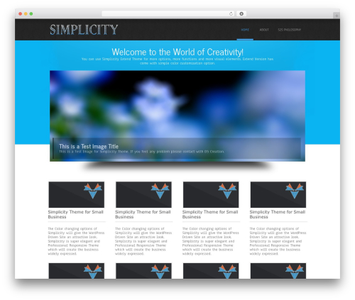 Simplicity Lite free WordPress theme - snowballtosuccess.info