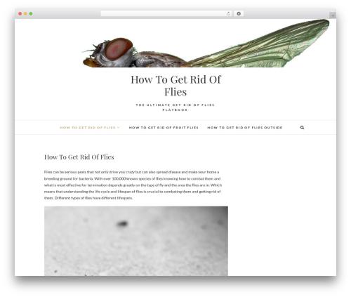 Theme WordPress Edge - getridofflies.net