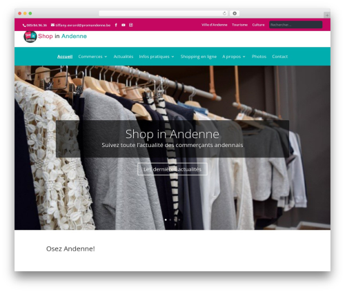 Andenne Child WordPress ecommerce theme - shopinandenne.be