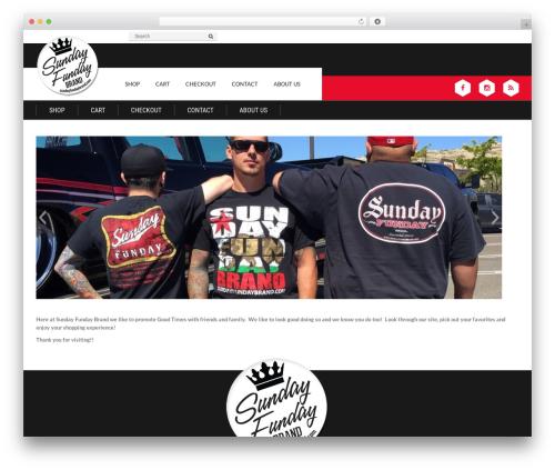 Epira Lite top WordPress theme - sundayfundaybrand.com