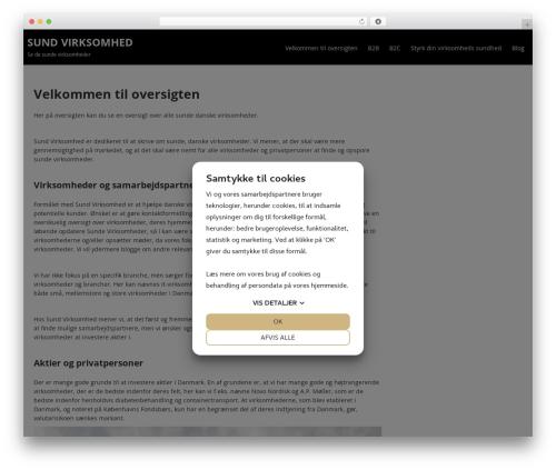 Terminal Lite WordPress template free - sund-virksomhed.dk