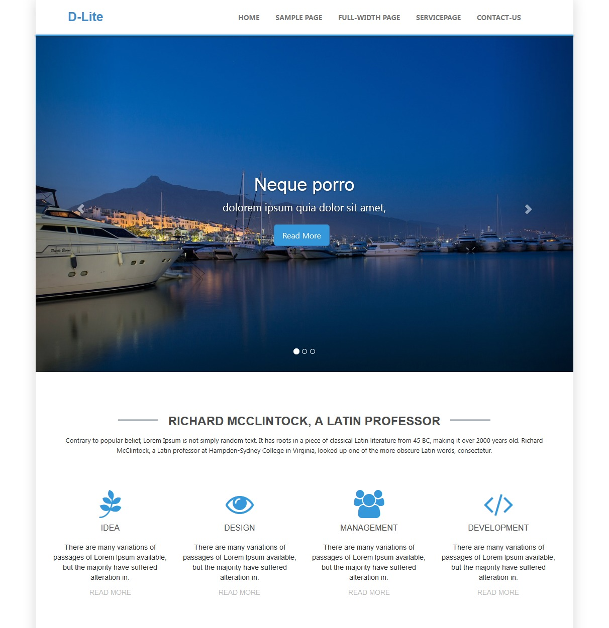 D-lite WordPress template for business
