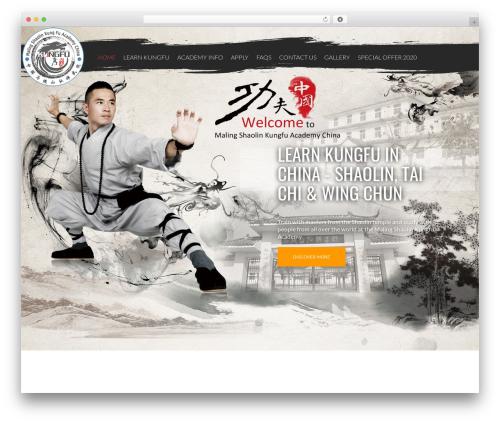 Twenty Thirteen best free WordPress theme - shaolin-kungfu.com