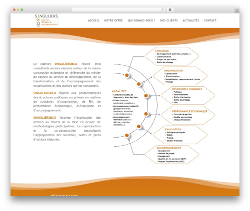 Divi WordPress page template - singuliersco.com