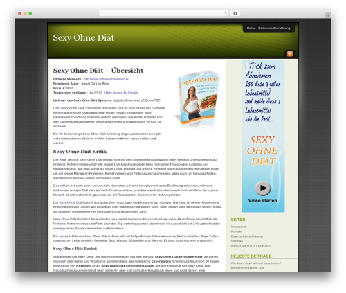 WordPress theme Affiliate Internet Marketing theme - sexy-ohne-diaet.net