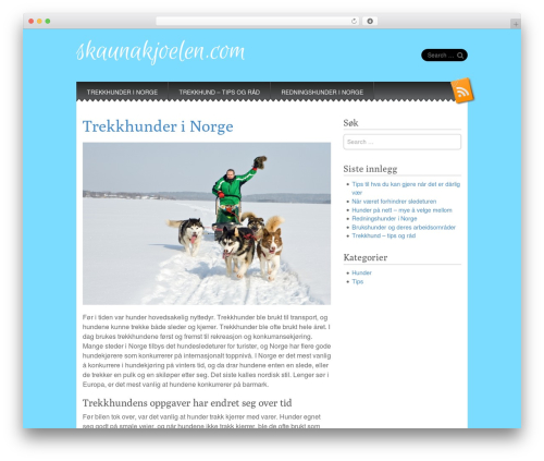 Snowblind best free WordPress theme - skaunakjoelen.com