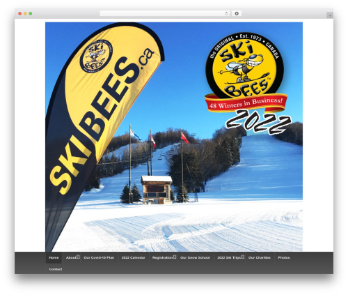 Responsive WordPress theme free download - skibees.ca