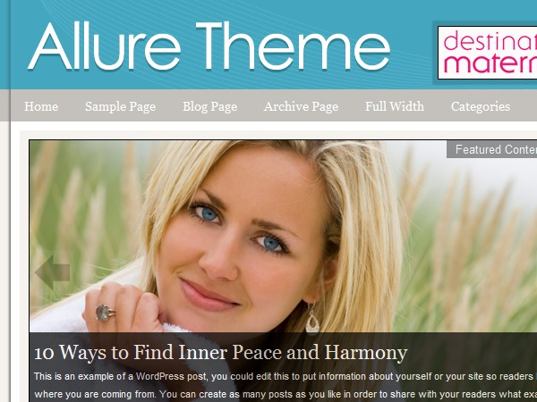 Allure WordPress Theme theme WordPress