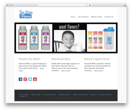 Best WordPress theme Lightfast - truedairyflavors.com