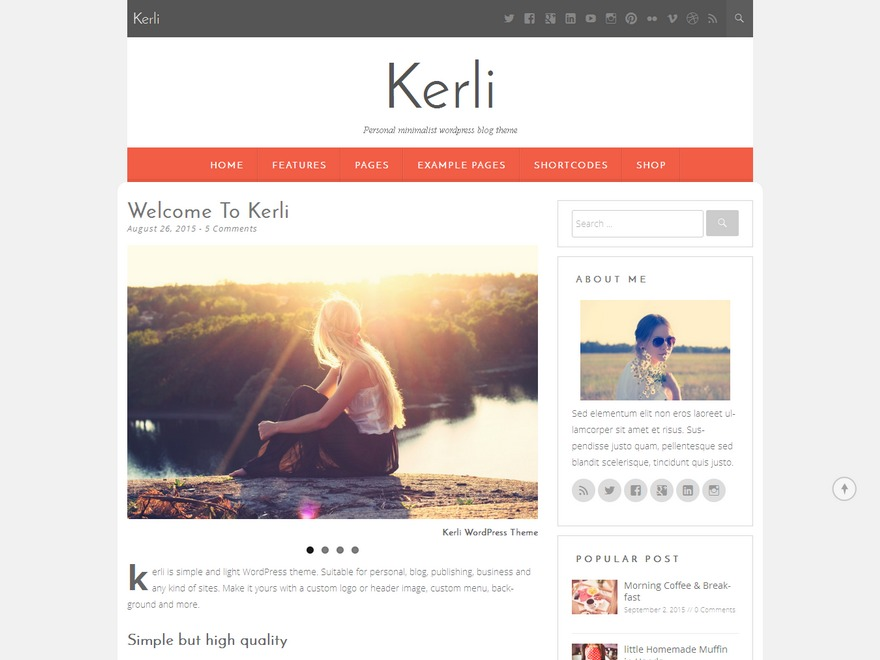 Kerli best WordPress magazine theme