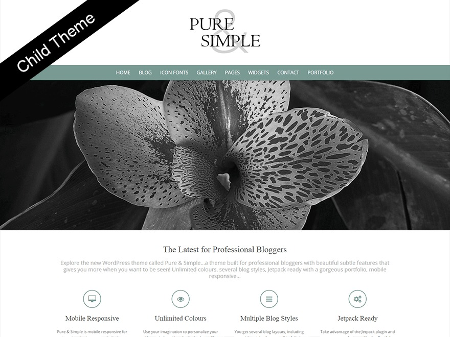Pure and Simple Child WordPress website template