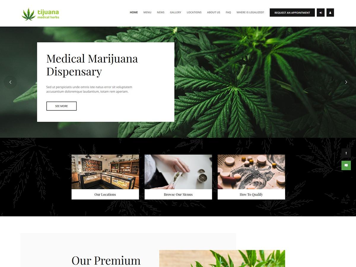 Tijuana company WordPress theme