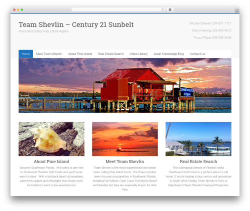 WordPress theme Accelerate - teamshevlin.com