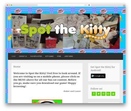 Best WordPress template Motif - spotthekitty.com