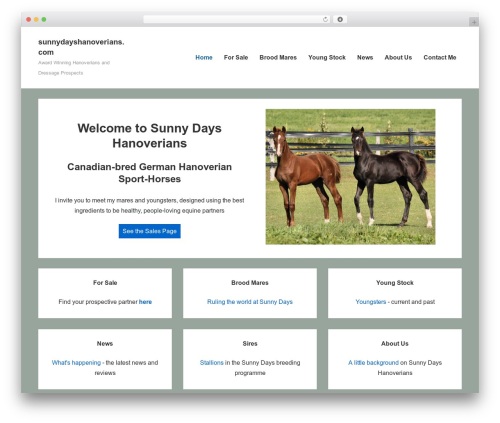 Responsive theme free download - sunnydayshanoverians.com