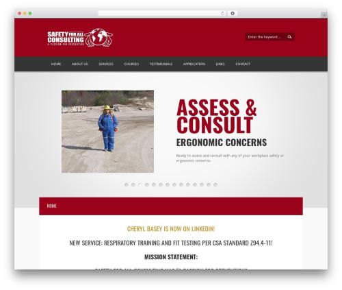 Best WordPress theme Twins - safetyforallconsulting.com