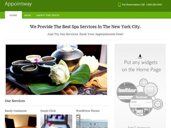 Appointway free WordPress theme