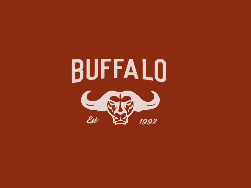 Best WordPress template Buffalo