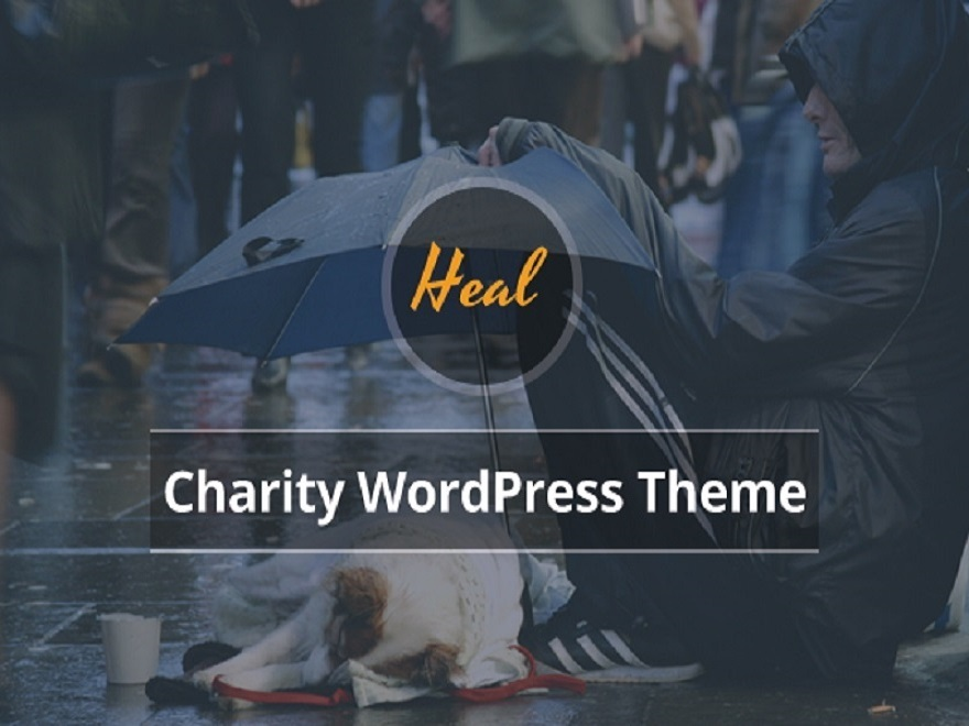 Best WordPress template Heal